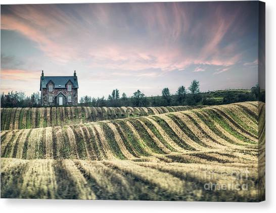 Rolling Hills Canvas Print - Roll With The Wind by Evelina Kremsdorf
