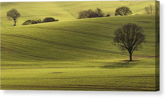 Nottinghamshire Canvas Print - Rolling Fields by Chris Dale
