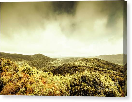 Natural Landscapes Canvas Print - Rolling Hills Of The Tarkine, Tasmania by Jorgo Photography - Wall Art Gallery