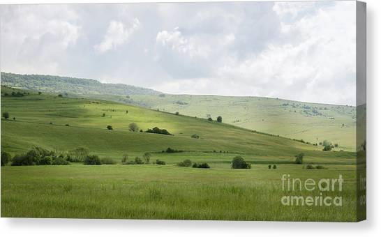 Rolling Landscape, Romania Canvas Print