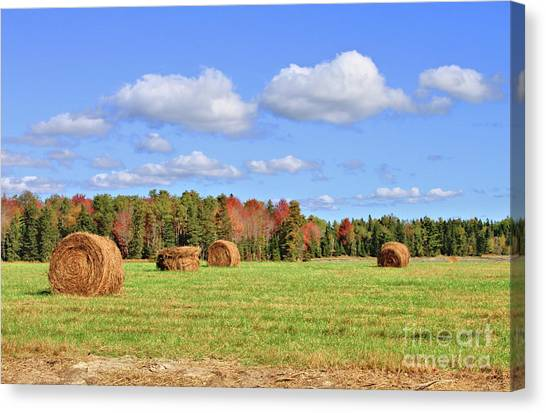 Rolls Of Hay On A Beautiful Day Canvas Print