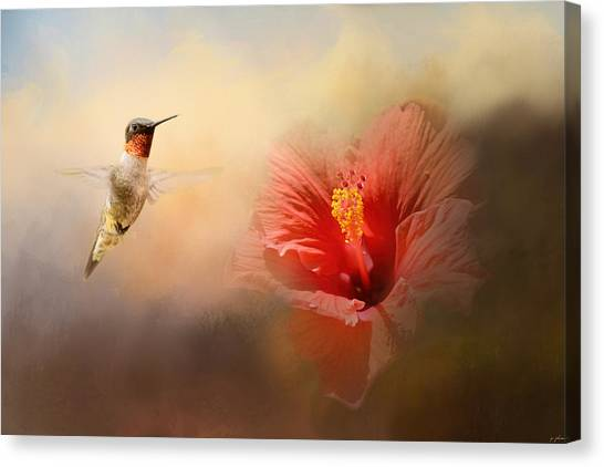 Romancing The Hibiscus Canvas Print