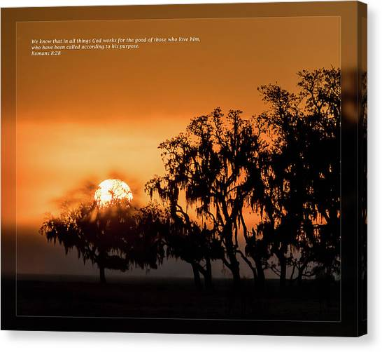 Canvas Print featuring the photograph Romans 8 28 by Dawn Currie