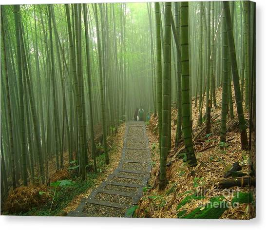 Romantic Bamboo Forest Canvas Print