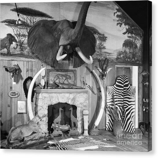 Andirons Canvas Print - Room With Big Game Trophies, C.1940-50s by Debrocke/ClassicStock