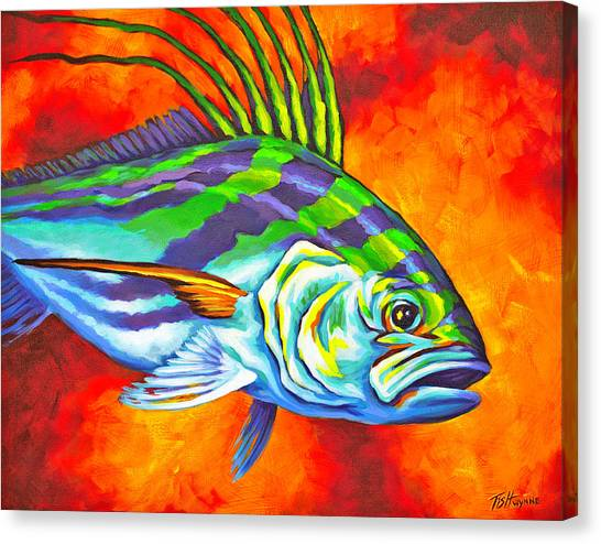 Rooster Fish Canvas Print