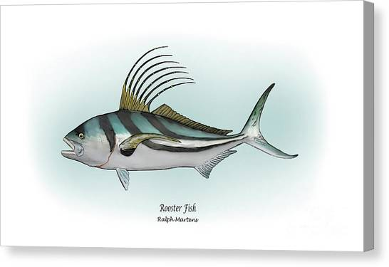 Angling Art Canvas Print - Roosterfish by Ralph Martens