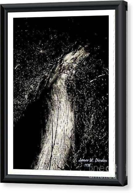 Root-2 Canvas Print