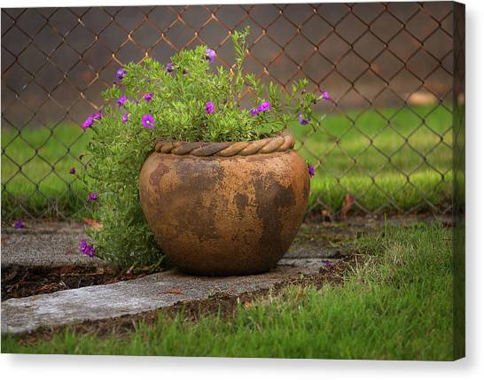 Rope Pot Flowers Canvas Print