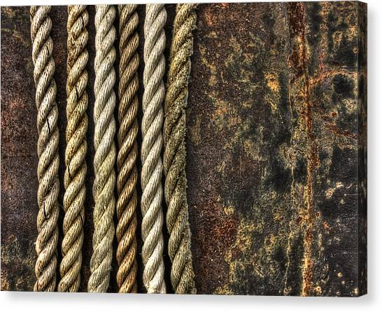 Rope Canvas Print - Ropes by Evelina Kremsdorf