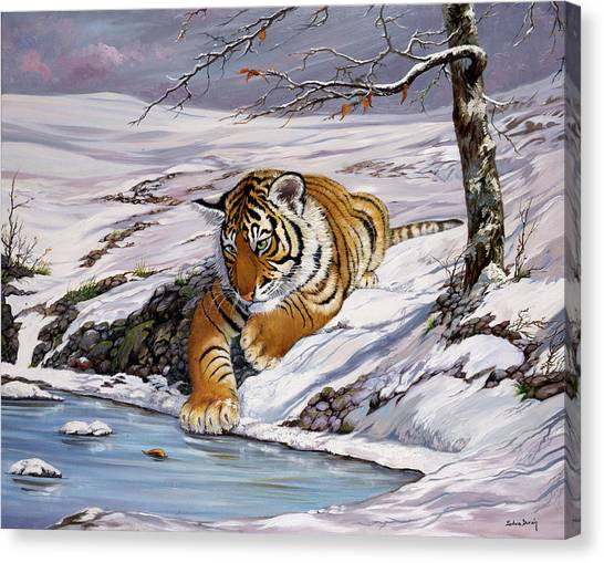 Roque Playing In The Ice Pond Canvas Print by Silvia  Duran