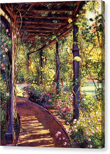 Arbor Canvas Print - Rose Arbor Toluca Lake by David Lloyd Glover