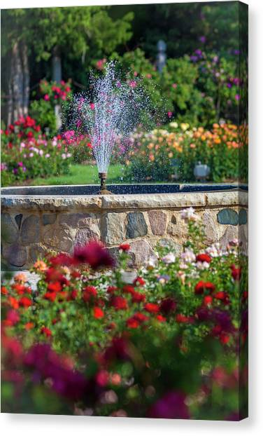 Rose Fountain Canvas Print
