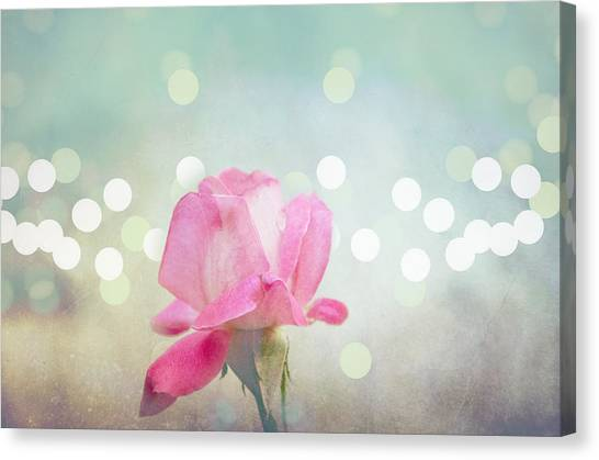 Red Roses Canvas Print - Rose by Gordana Stanisic