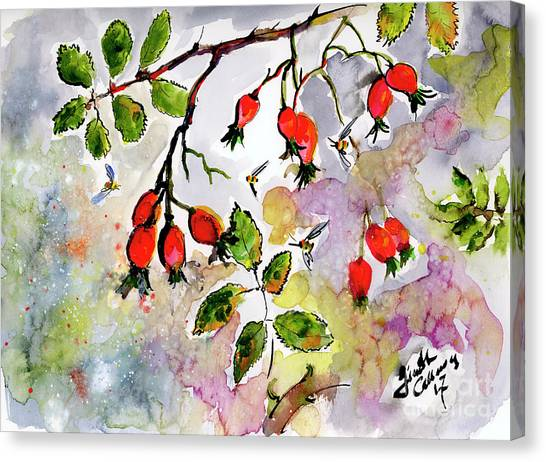 Rose Hips And Bees Watercolor And Ink Canvas Print
