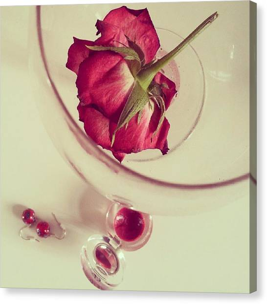 Red Wine Canvas Print - #rose #love #life #girl #pink #soft by Cat H