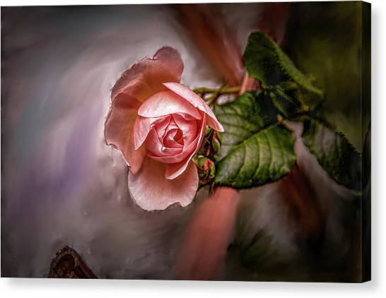 Canvas Print featuring the mixed media Rose On Paint #g5 by Leif Sohlman