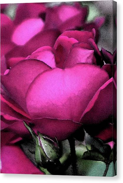Rose Petals Canvas Print by Michele Caporaso