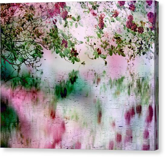 Rose Reflections Canvas Print