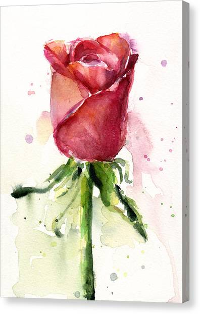 Valentines Day Canvas Print - Rose Watercolor by Olga Shvartsur