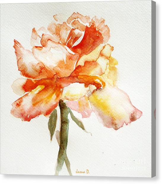 Rose Yellow Canvas Print
