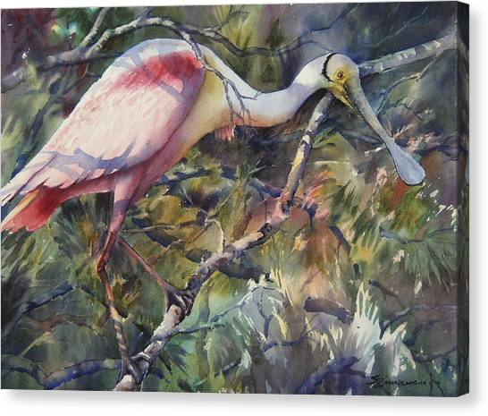 Spoonbills Canvas Print - Roseate Spoonbill by Sue Zimmermann