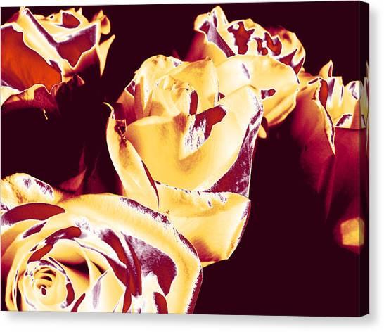 Roses #1 Canvas Print