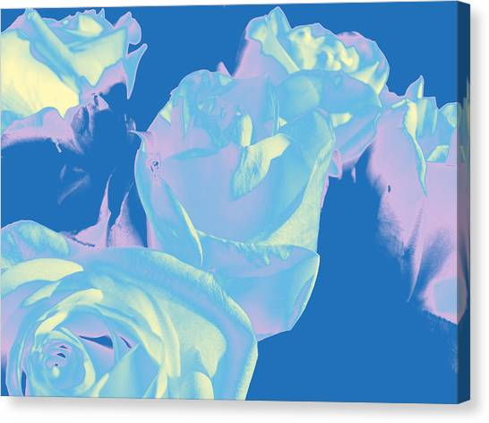 Roses #3 Canvas Print