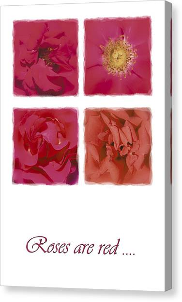 Roses Are Red .... Canvas Print