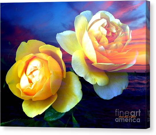 Roses Basking In A Ocean Sunset Canvas Print