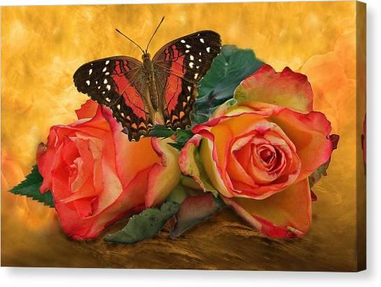 Roses In Golden Light 2 Canvas Print
