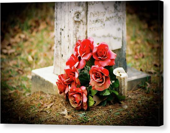 Roses On A Grave Canvas Print by Jonathan  Daniels