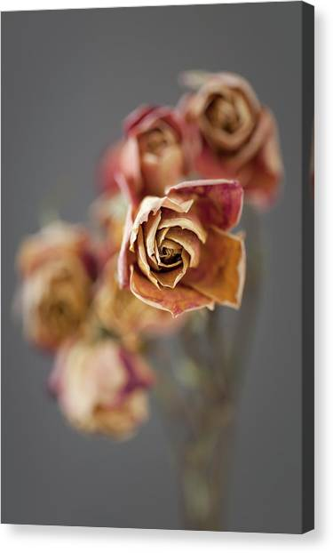 Canvas Print - Roses On Grey 01 by Richard Nixon