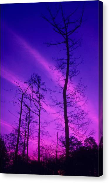 Rosy Fingers Of Dawn Canvas Print