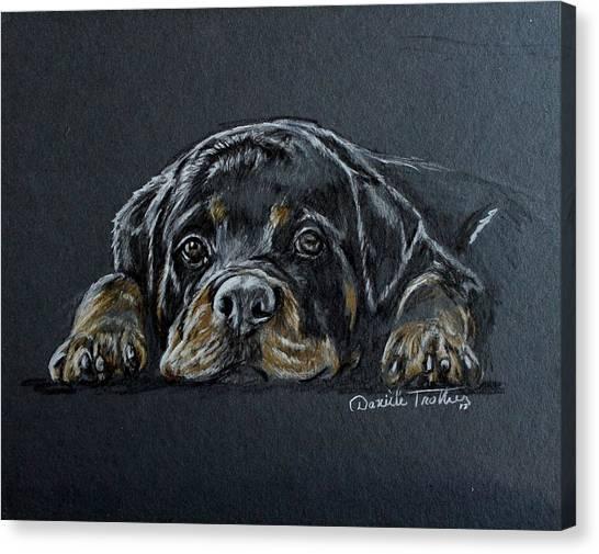 Rottweilers Canvas Print - Rottweiler by Daniele Trottier