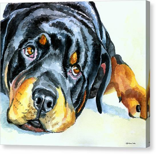 Rottweilers Canvas Print - Rottweiler by Lyn Cook