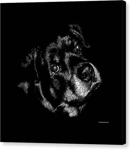 Rottweiler Mozart Portrait Canvas Print