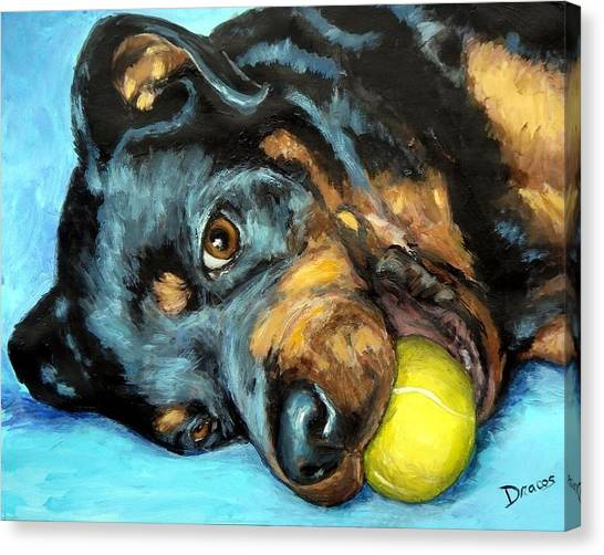 Rottweilers Canvas Print - Rottweiler With Ball by Dottie Dracos