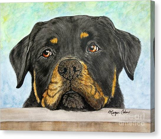 Canvas Print - Rottweiler's Sweet Face 2 by Megan Cohen
