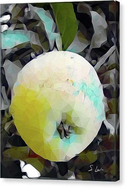 Round Fruit Canvas Print