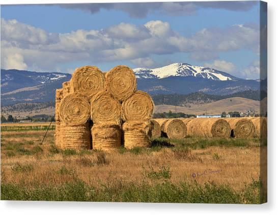 Round Hay Bales And Mountain Canvas Print