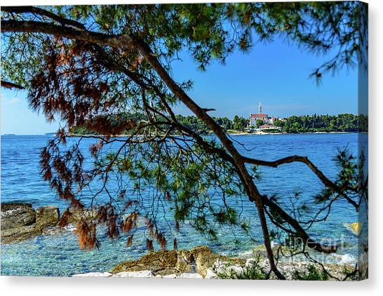 Rovinj Old Town Accross The Adriatic Through The Trees Canvas Print