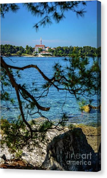 Rovinj Seaside Through The Adriatic Trees, Istria, Croatia Canvas Print