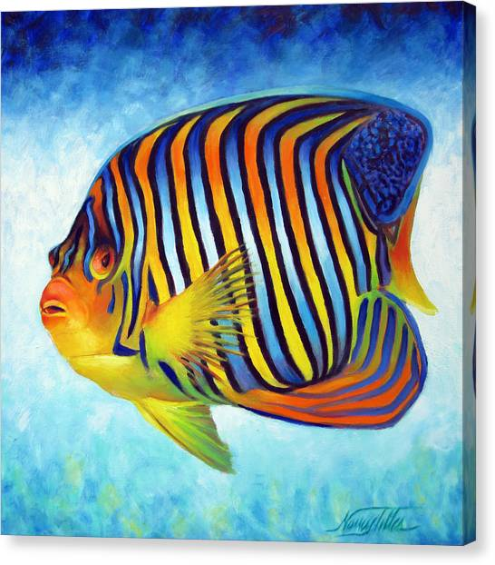 Royal Queen Angelfish Canvas Print