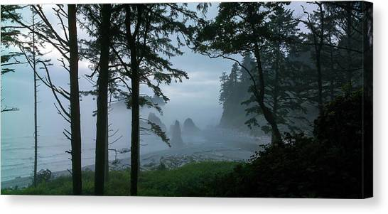 Ruby Beach II Washington State Canvas Print