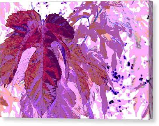 Ruby Leaves Canvas Print by Richard Coletti