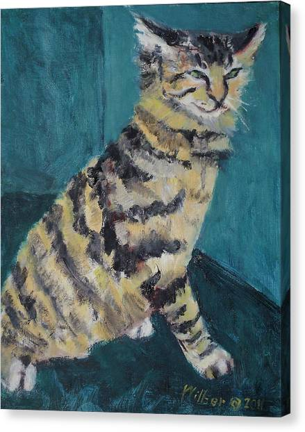 Main Coons Canvas Print - Rudi Six Months by Bonnie Wilber