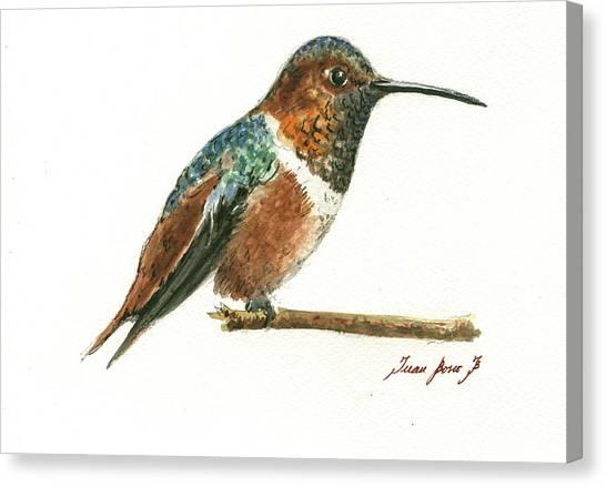 Small Birds Canvas Print - Rufous Hummingbird Watercolor by Juan Bosco
