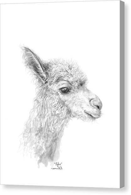 Canvas Print - Rufus by K Llamas