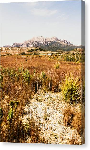 Airports Canvas Print - Rugged Australian Bushland by Jorgo Photography - Wall Art Gallery